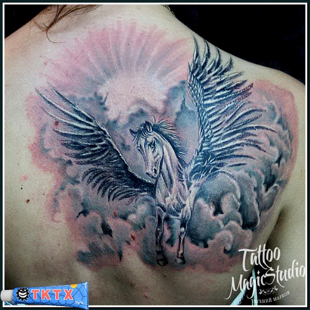 Фото татуировки пегаса прикол