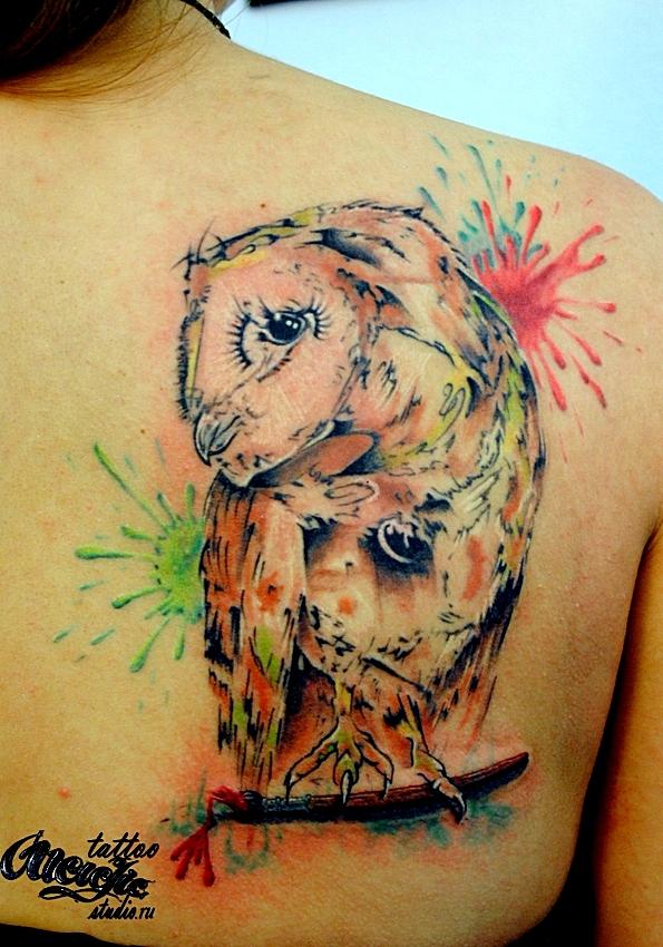 Сова, сыч, акварель татуировка