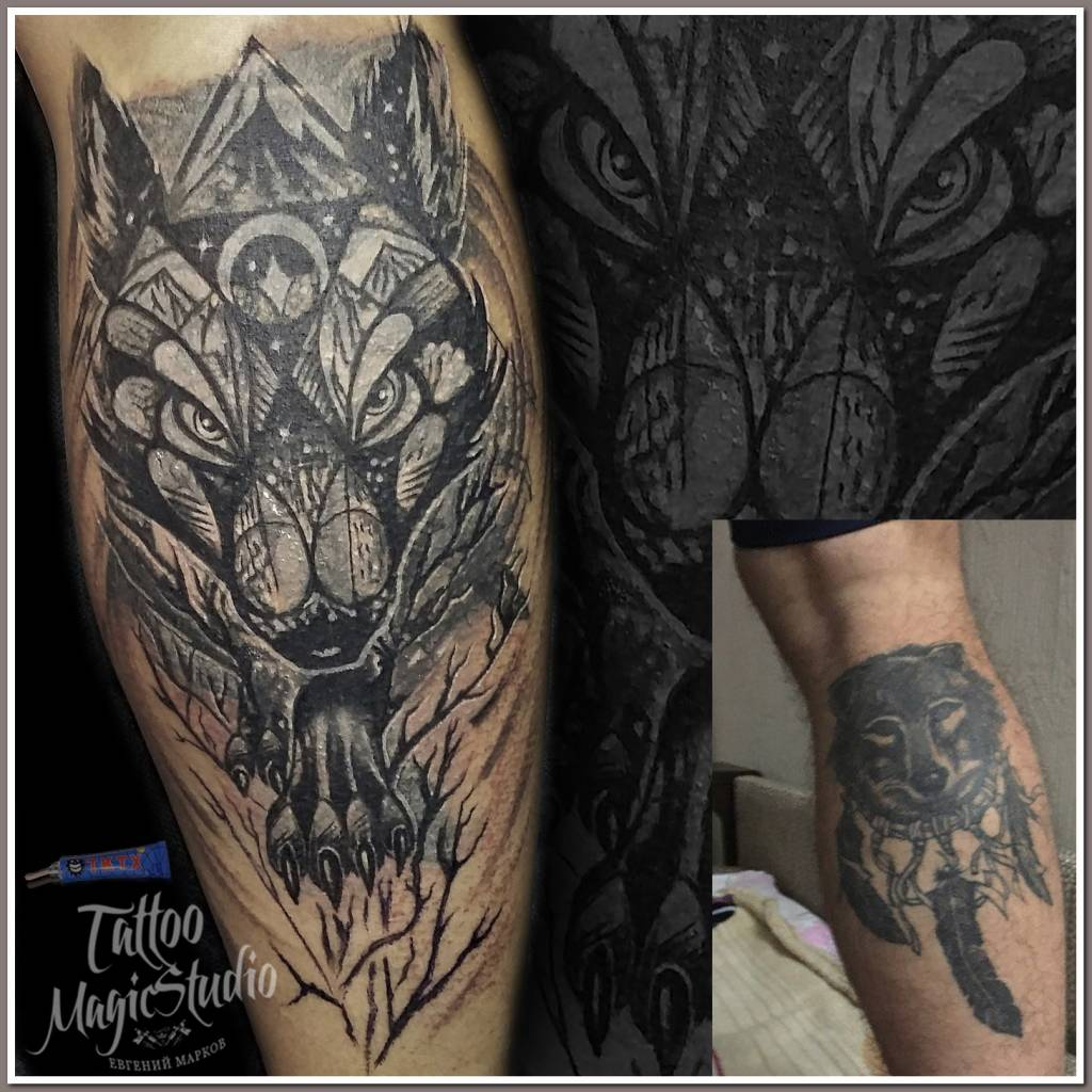 волк перекрытие старой татуировки wolf cover up old tattoo