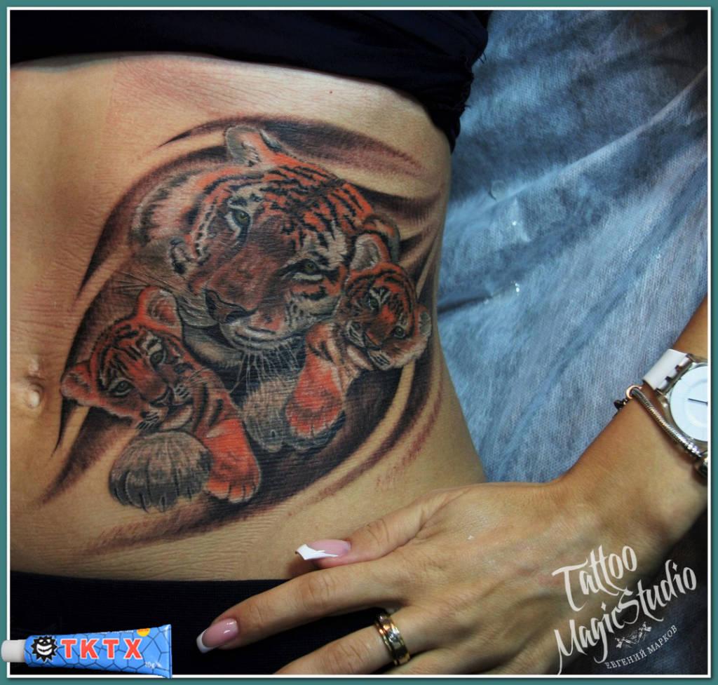 тату в сочи,татуировки в сочи студия салон, татуировка студия салон в сочи,   тату салоны в сочи,тату салон в сочи, тату студия в сочи,tattoo in sochi, tattoo studio in sochi,tattoo sochi, tattoo workshop,tattooart, tattooed,inked,sleeve,ink,tattooedgirl,tatts,  instatattoo,tatattoos,tagstagramers,  tagsta,newtattoo,instagramtags,tats,  sleeve,art,design,artist,amazing,body,tattoos, bodyart,tattoomagicstudio,tattoomastersochi,татумастерсочи, татуировщиксочи,татуировкасочи,tattoosochi,tktx,TKTX, обезболивающий крем тктх, тигрица и тигрята, тигрята и тигрица, тигрица с тигрятами