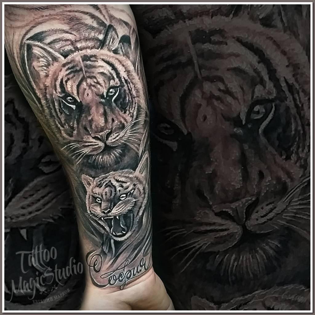 тигр тигрёнок tiger