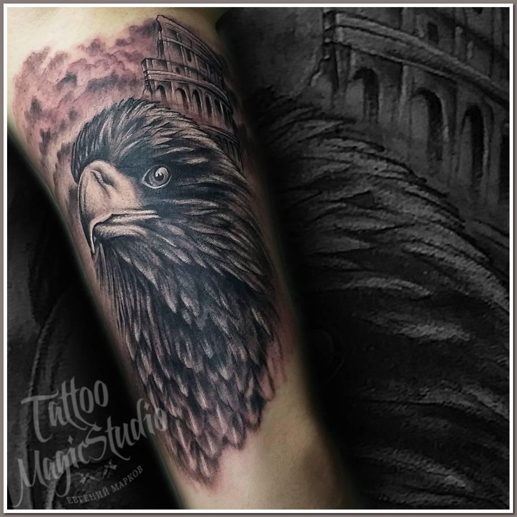 1 сеанс (орёл колизей фрагмент рукава)